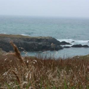 Saint-Pierre och Miquelon